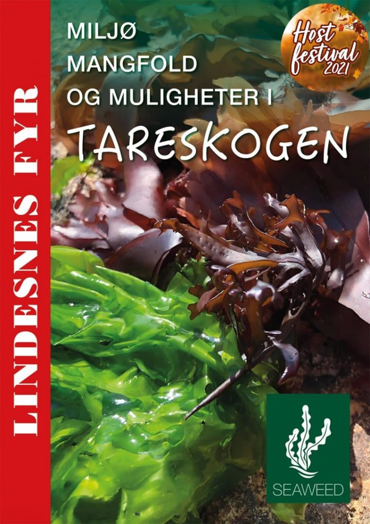 Høstfestivalen: kortkurs – Tareskogen
